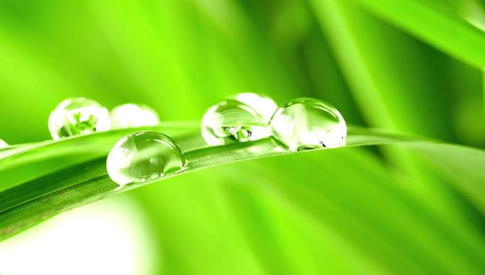 Wir leisten unseren Beitrag für die Umwelt durch den Einsatz moderner Recyclingtechniken